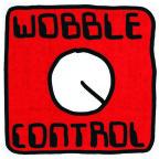 effective presentations - controlling your wobbles